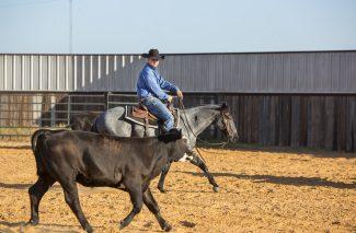 matt-miller-rides-cutting-horse-prospect