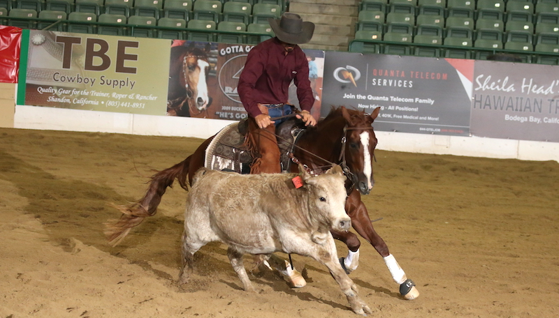reno-snaffle-bit-futurity-champion-smart-shiney-playboy
