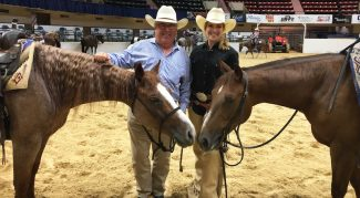 rachel-patton-bobby-patton-horses