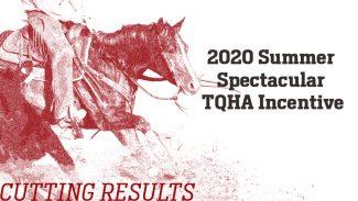 tqha-incentive-results