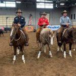 Yellowstone-horses