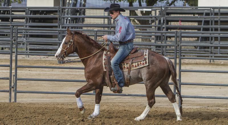 zane-davis-riding-horse
