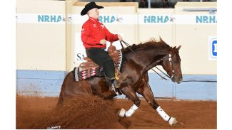 annual-reining-stats-leader-super-marioo