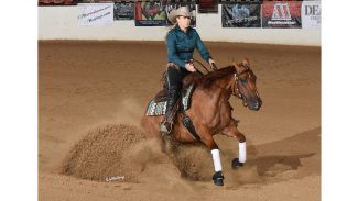 high-roller-futurity-champion-tinseltshines