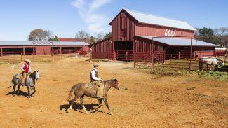 6666-ranch-cowboys