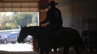 horse-show-rider