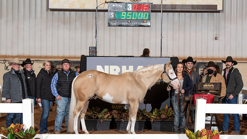 nrha-futurity-sales-topper-im-gunna-shine