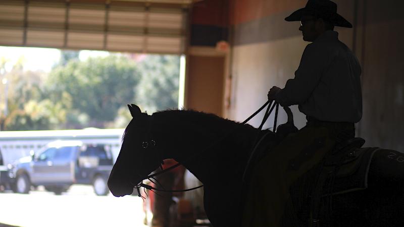 cutting-horse