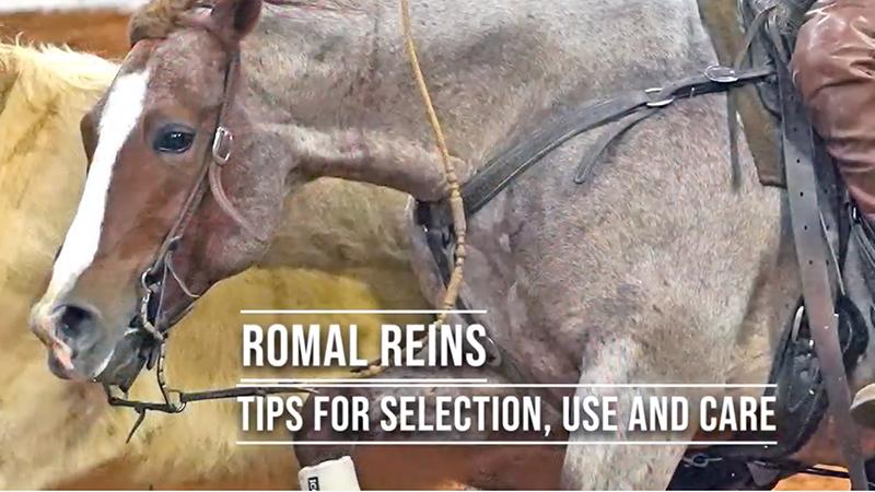romal reins