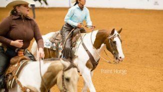 apha-horses