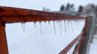 icicles-on-fence