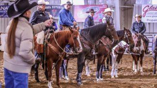 nvrha-ranch-horse