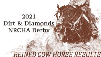 dirt-and-diamonds-derby