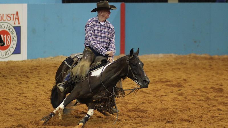 tobiano-horse-esr-suzanna