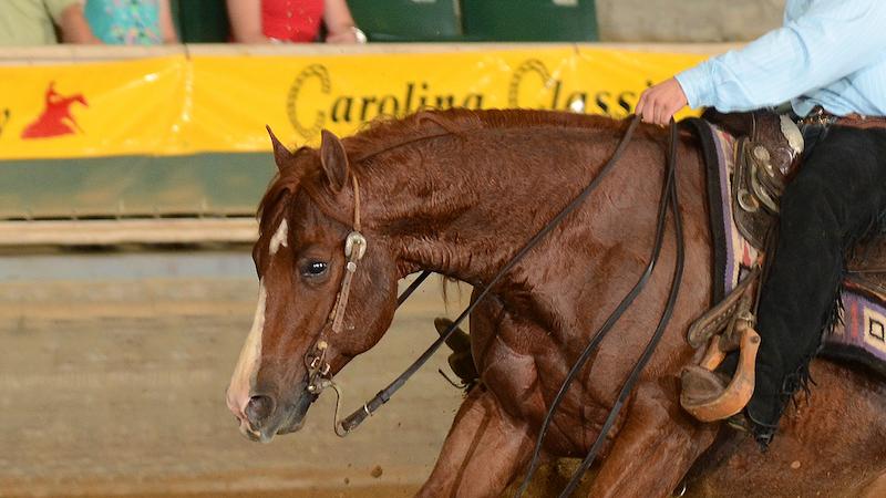 nrha-horse-show