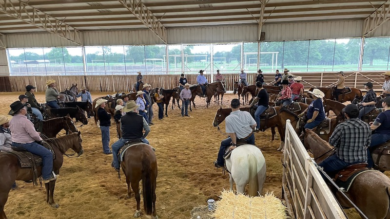 bravehearts-cutting-horses