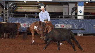 versatility-ranch-horse-world-champion-playin-motown