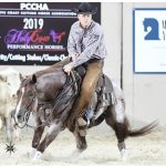 fults-ranch-absolute-reduction-horse-warlock