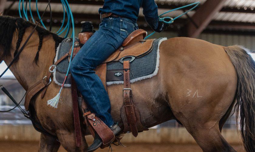 wool saddle pad on a sorrel horse