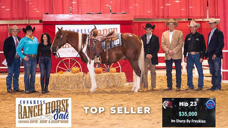 congress-ranch-horse-sale-im-sharp-by-freckles