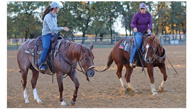 cow-horse-for-ropers-jackie-crawford